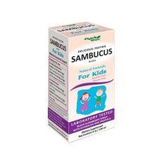 Самбукус нигра – сироп за деца 1